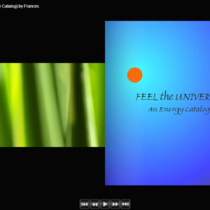 Feel The Universe (An Energy Catalogue) by Frances
