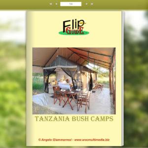 Tanzania Bush Camps
