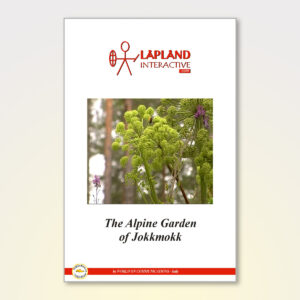 The Alpine Garden of Jokkmokk