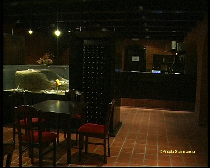 Hotel Ormoz